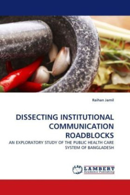 DISSECTING INSTITUTIONAL COMMUNICATION ROADBLOCKS