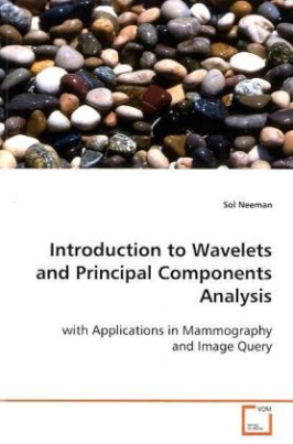 Introduction to Wavelets and Principal Components  Analysis