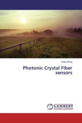 Photonic Crystal Fiber sensors