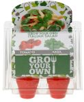 Zuchttopf-Set 4er Italienische Salat Tomate und Basilikum