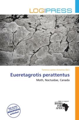 Eueretagrotis perattentus