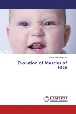 Evolution of Muscles of Face
