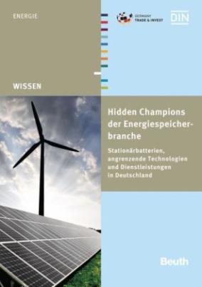 Hidden Champions der Energiespeicherbranche