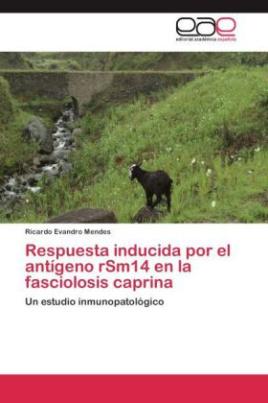 Respuesta inducida por el antígeno rSm14 en la fasciolosis caprina