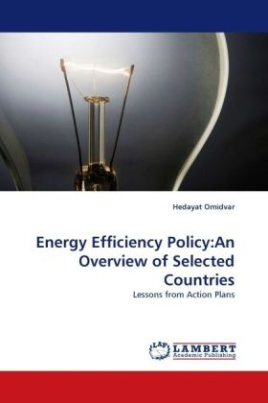 Energy Efficiency Policy:An Overview of Selected Countries