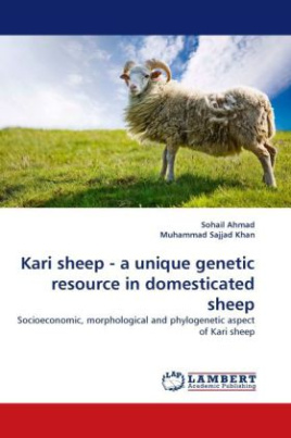 Kari sheep - a unique genetic resource in domesticated sheep