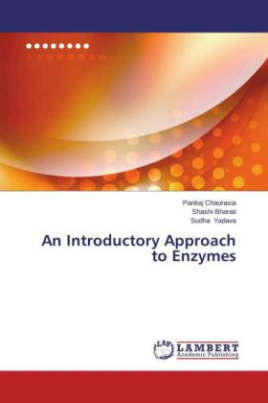 An Introductory Approach to Enzymes