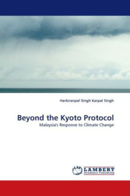 Beyond the Kyoto Protocol