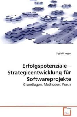 Erfolgspotenziale   Strategieentwicklung für Softwareprojekte