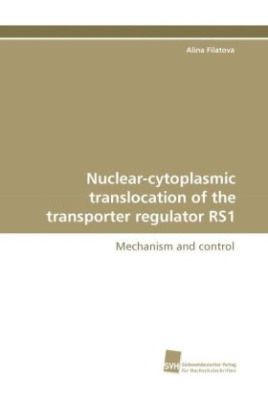 Nuclear-cytoplasmic translocation of the transporter regulator RS1