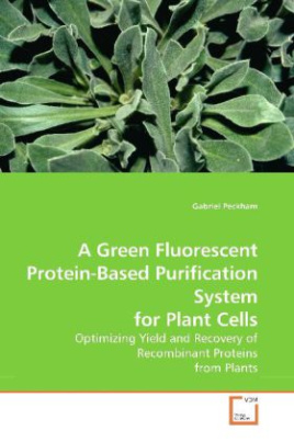 A Green Fluorescent Protein-Based Purification System for Plant Cells
