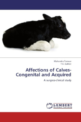 Affections of Calves-Congenital and Acquired