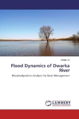 Flood Dynamics of Dwarka River