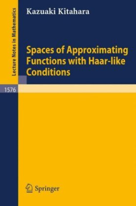 Spaces of Approximating Functions with Haar-like Conditions