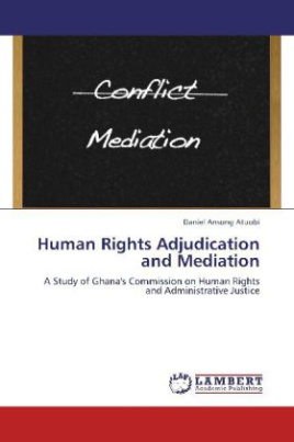 Human Rights Adjudication and Mediation