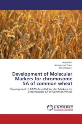 Development of Molecular Markers for chromosome 5A of common wheat