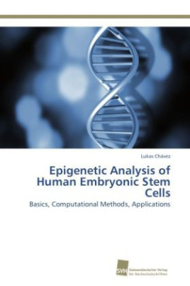 Epigenetic Analysis of Human Embryonic Stem Cells