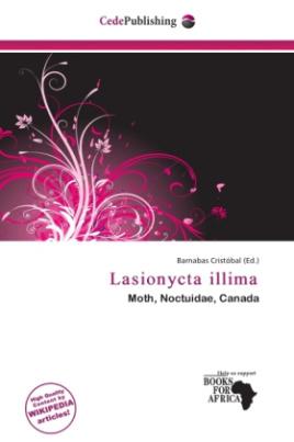 Lasionycta illima