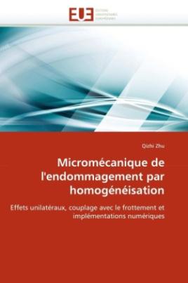 Micromécanique de l'endommagement par homogénéisation