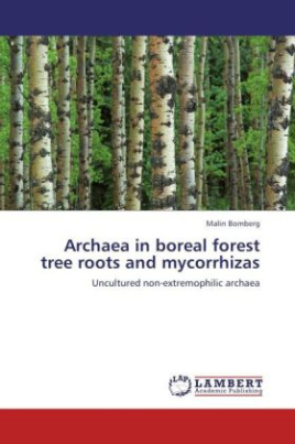 Archaea in boreal forest tree roots and mycorrhizas