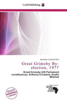 Great Grimsby By-election, 1977