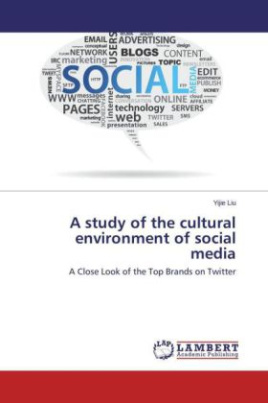 A study of the cultural environment of social media